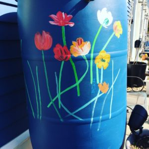 Spring flowers on rain barrel